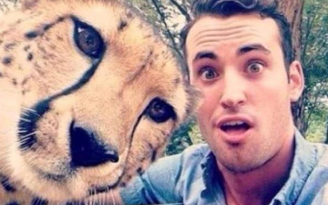 Fotoğrafları işgal eden sevimli hayvanlar