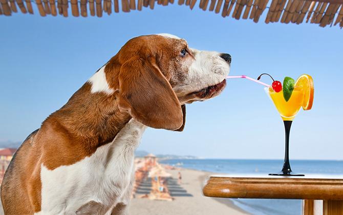 Hafta sonu tatilinde Antalya'da hava nasıl olacak?